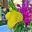 The Garden Party by Cheri Sundra