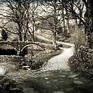 Twin Arched Pack-Horse Bridge. by mariarty