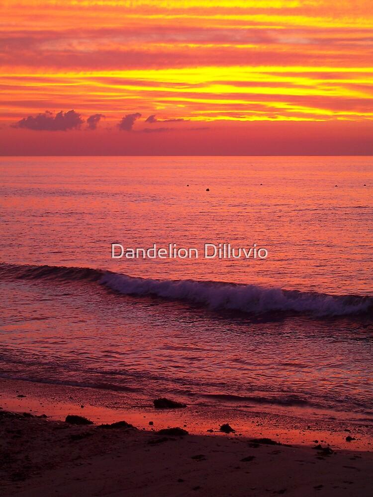 Sky of Fire by Dandelion Dilluvio