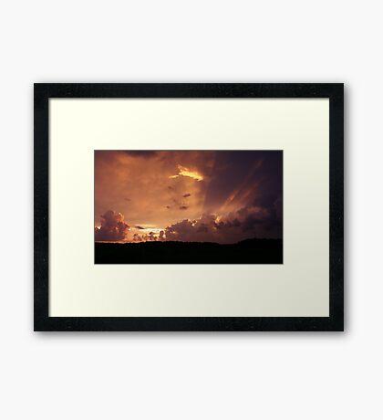 Florida Orange Framed Print