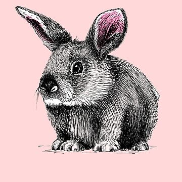 Bunny by AirDrawn