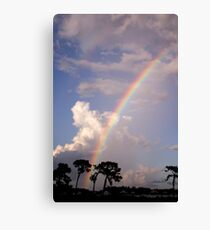 Rainbow & Rain Canvas Print