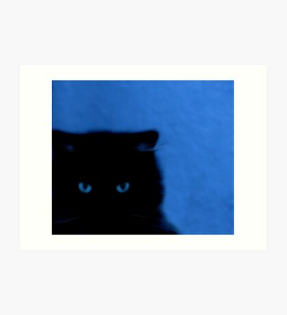 kitty at night Art Print