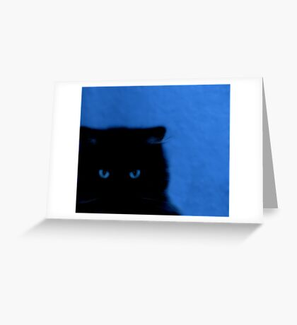 kitty at night Greeting Card