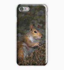 Squirrel iPhone Case/Skin