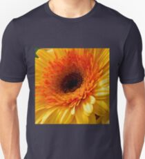 Last Week's Pick   ^ Unisex T-Shirt