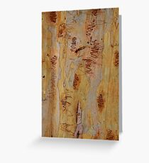 Scribbly Gum 4 Greeting Card