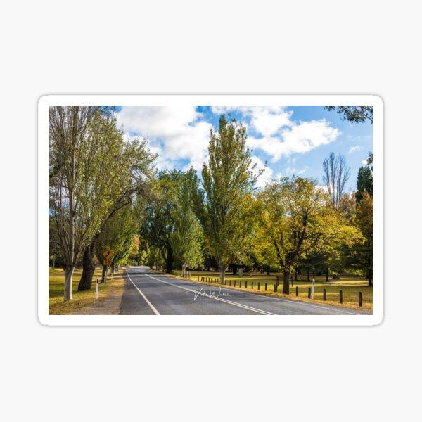 Mount Macedon Road, Mount Macedon, Victoria, Australia. Sticker