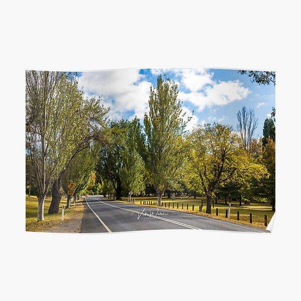 Mount Macedon Road, Mount Macedon, Victoria, Australia. Poster