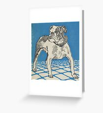 Vintage American Bulldog Illustration (1912) Greeting Card