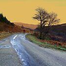 On Foot by Alexander Mcrobbie-Munro