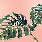 Monstera Blush by Ann Hudec