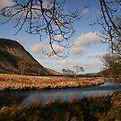 Lake in Glenveagh National Park #1 by Martina Fagan
