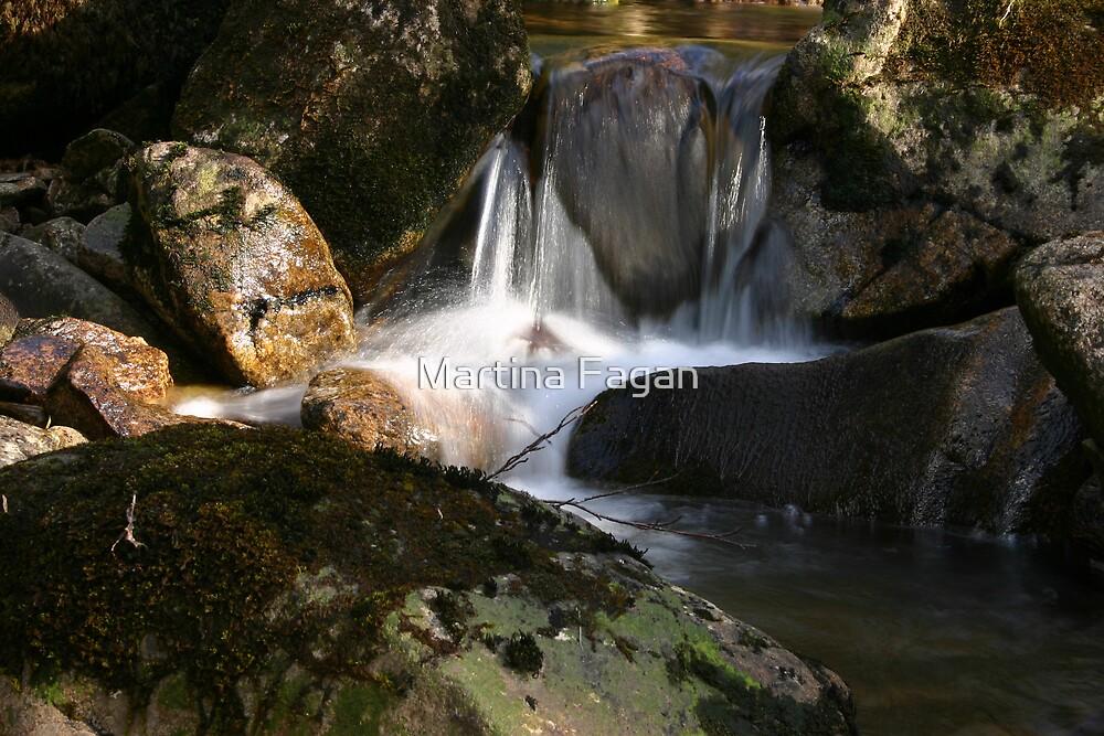 Waterfall Glenveagh National Park by Martina Fagan