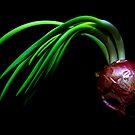 Oh! Onion by jerry  alcantara