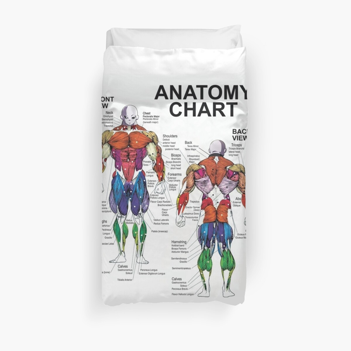 Anatomy chart muscle diagram duvet covers by fanou boomboom anatomy chart muscle diagram by fanou boomboom ccuart Gallery