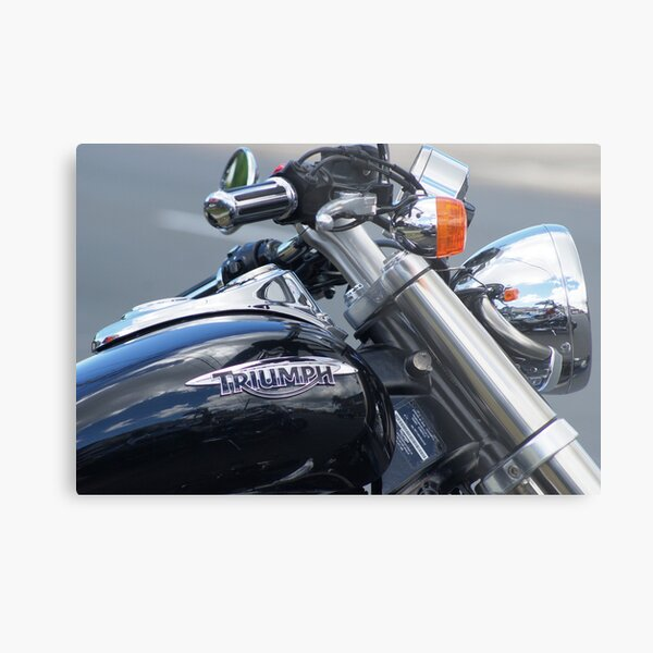 """""""Art is the Triumph over Chaos"""" ~ John Cheever Metal Print"""