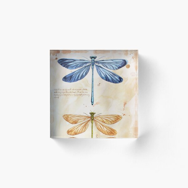 Nature art insect science Acrylic Block