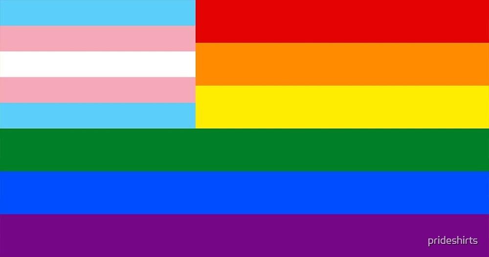Transgay com
