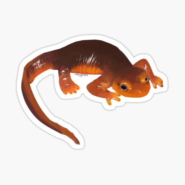 california newt Sticker