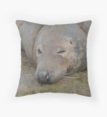 seal donna nook Throw Pillow