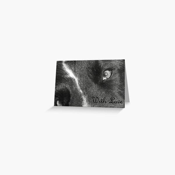Doggie Devotion Greeting Card