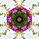 Floral Mandala Vines by DesJardins