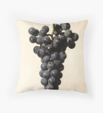 Vintage Concord Grapes Illustration  Floor Pillow