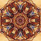 Mandala In Browns by DesJardins