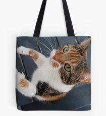 Lola Takes a Stand Tote Bag