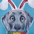 Easter Bunny Weimaraner by jfrier