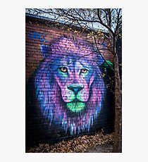 Lion's head. Artwork by Mr 'Silly' Sully Photographic Print