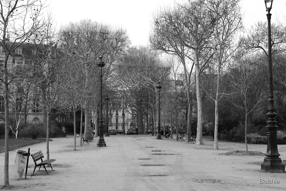 PARIS, FEB 2013, BLACK AND WHITE by Bolshie