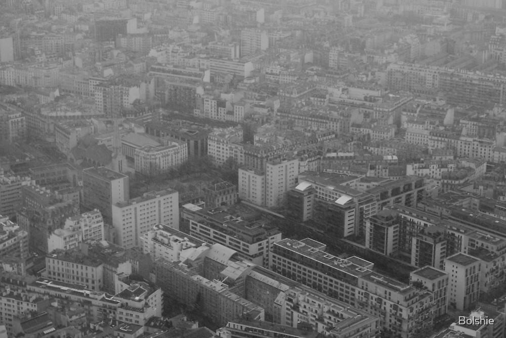 PARIS, EIFFEL TOWER, FEB 2013, BLACK AND WHITE by Bolshie