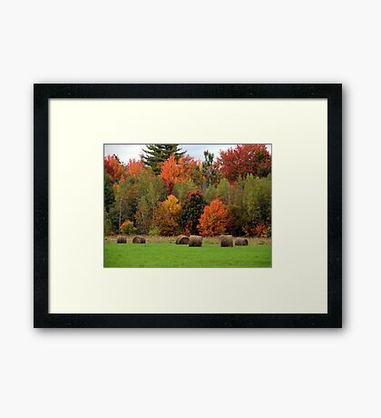 Can You Say AUTUMN? Framed Print