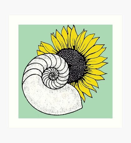 Sunflower Fibonacci Spiral Clip Art