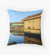 Duelling reflections Throw Pillow