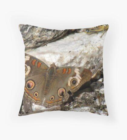 Butterfly ~ Common Buckeye Throw Pillow