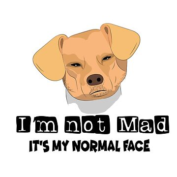 I'm not Mad it's my normal face dog angry meme by Mariokao