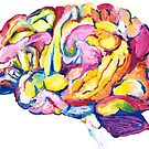 The Brain by annieclayton