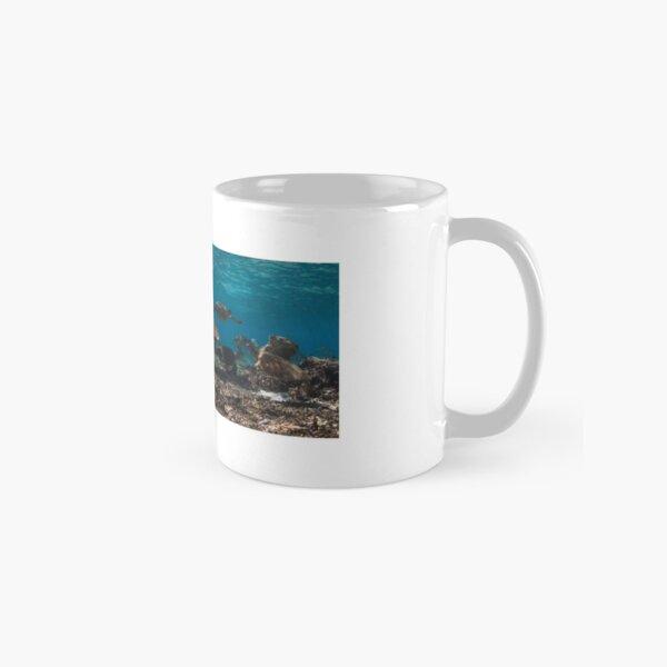 Sea turtle party Classic Mug