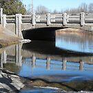 Bridge by Tracy Wazny