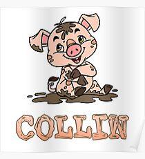 Collin Piggy Poster