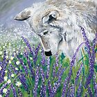 Lavender Wolf by tinaschofield