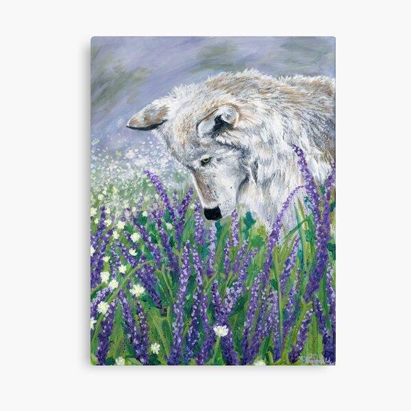 Lavender Wolf Canvas Print