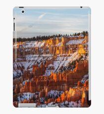 Bryce Canyon iPad Case/Skin