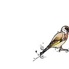 Goldfinch by Jenny Proudfoot