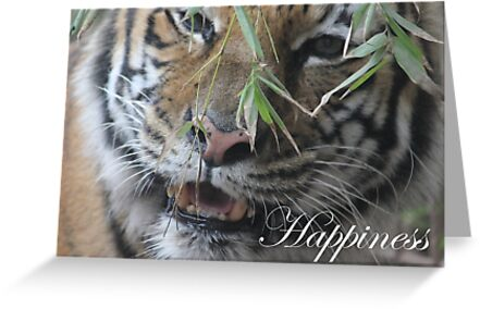 Motivate, Motivational Happiness by Mdillon