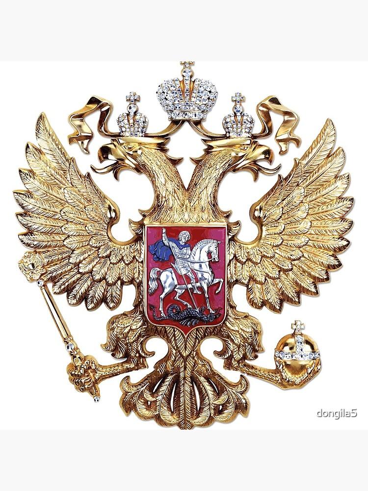 eagle by dongila5