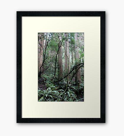 Spinning World Framed Print